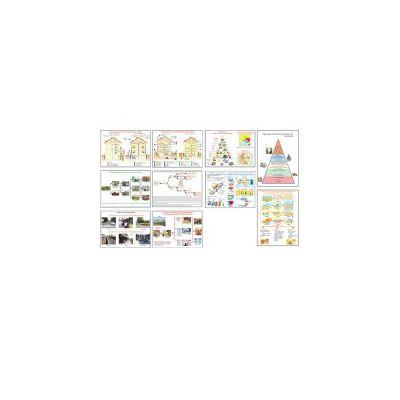 Planse educationale tehnologice clasele V-VIII - Set 12 planse color